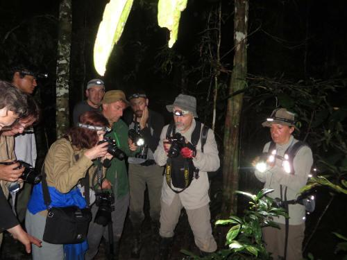 CLIMATE & WEATHER IN THE AMAZON RAINFOREST OF ECUADOR: night excursion in Cuyabeno.
