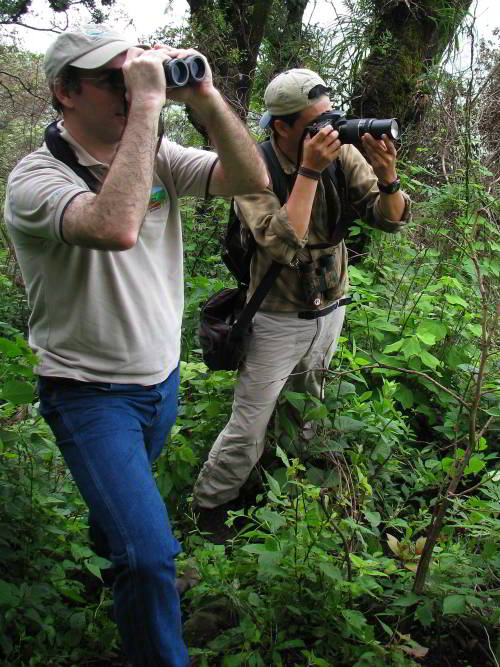 BEST CUYABENO TOURS: Birdwatchers on Amazon Expedition in Ecuador