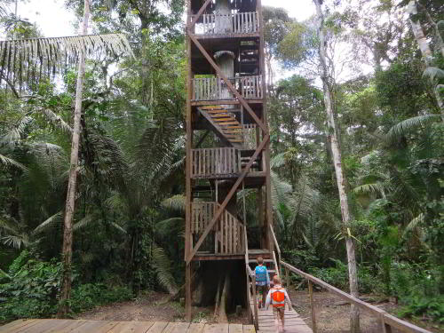 BEST CUYABENO TOURS: The Cuyabeno Canopy Tower.