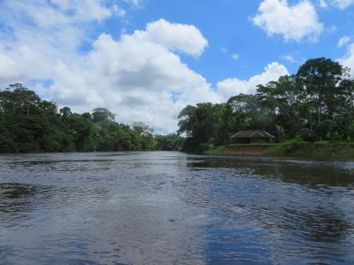 BEST CUYABENO TOURS: The mouth of the Cuyabeno River.